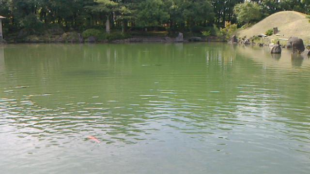 名勝養浩館(<br />  ようこうかん)