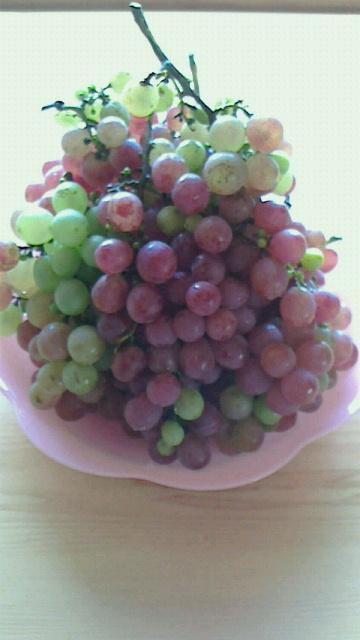 今年の我が家の葡萄の収穫